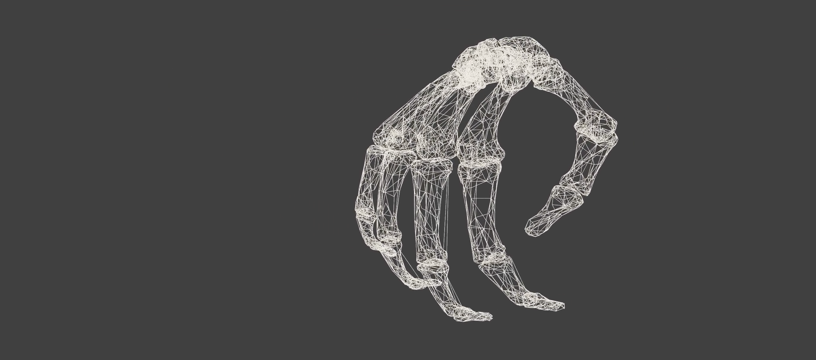 Hand Visualization Project.